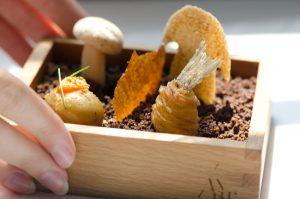 The Garden: Porcini Mushroom Chip, Porcini Meringue, Fried Potato-wrapped Fish and Chips, Chicken Marsala Chip, Patatas Bravas, Garlic, and Chocolate